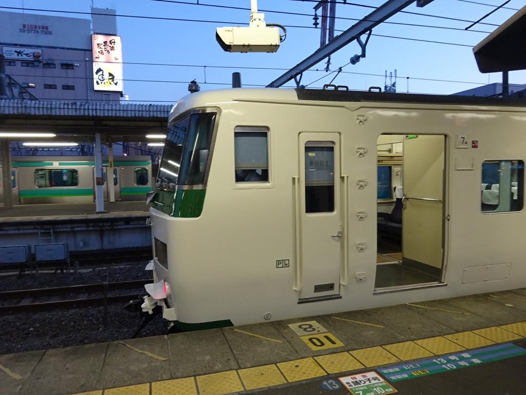 終点我孫子駅に到着した185系踊り子162号(2015/3/28)