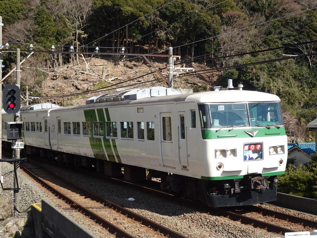 河津駅に到着する全車指定6+4両の踊り子153号(2020/2/11)