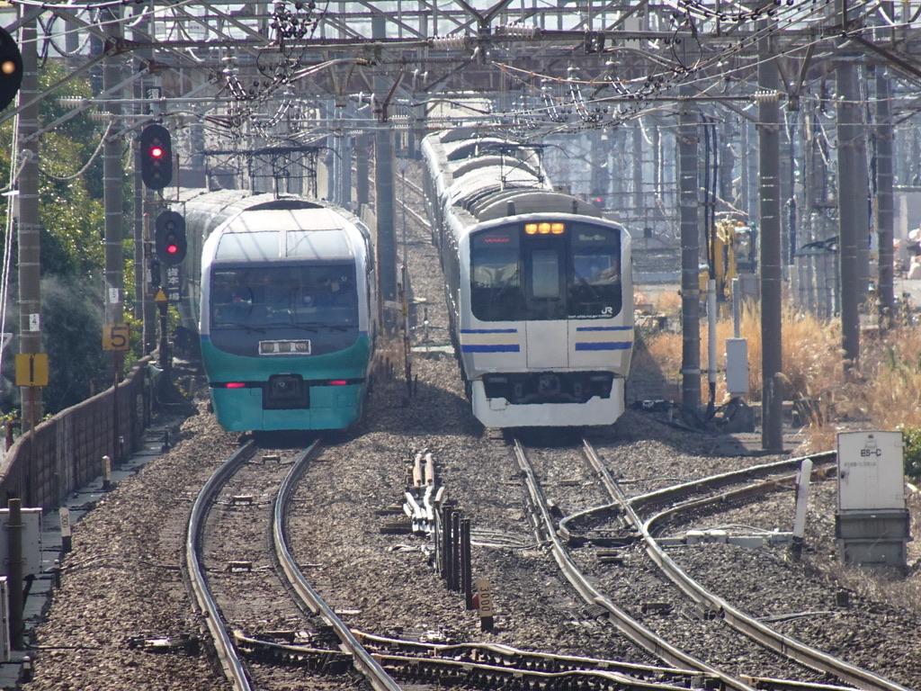 武蔵小杉駅を発車した251系スーパービュー踊り子3号と、到着するE217系横須賀線(2020/2/29)