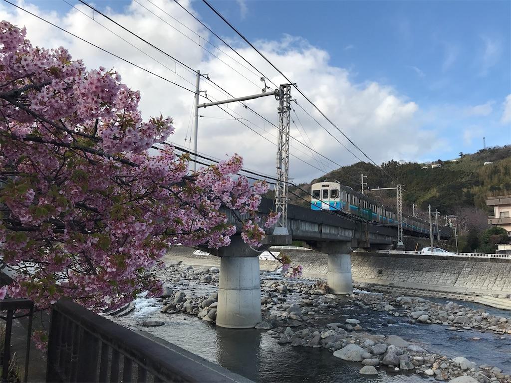 片瀬白田駅を通過した伊豆急行8000系快速河津桜号伊豆高原行き(2020/2/22)