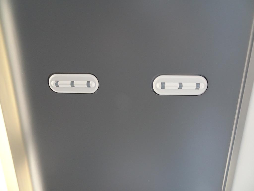 E257系踊り子号の座席上に取り付けられているランプ(2020/3/20) ひたち/ときわ(E657系)・あずさ/かいじ(E353系)等と同じものと思われる