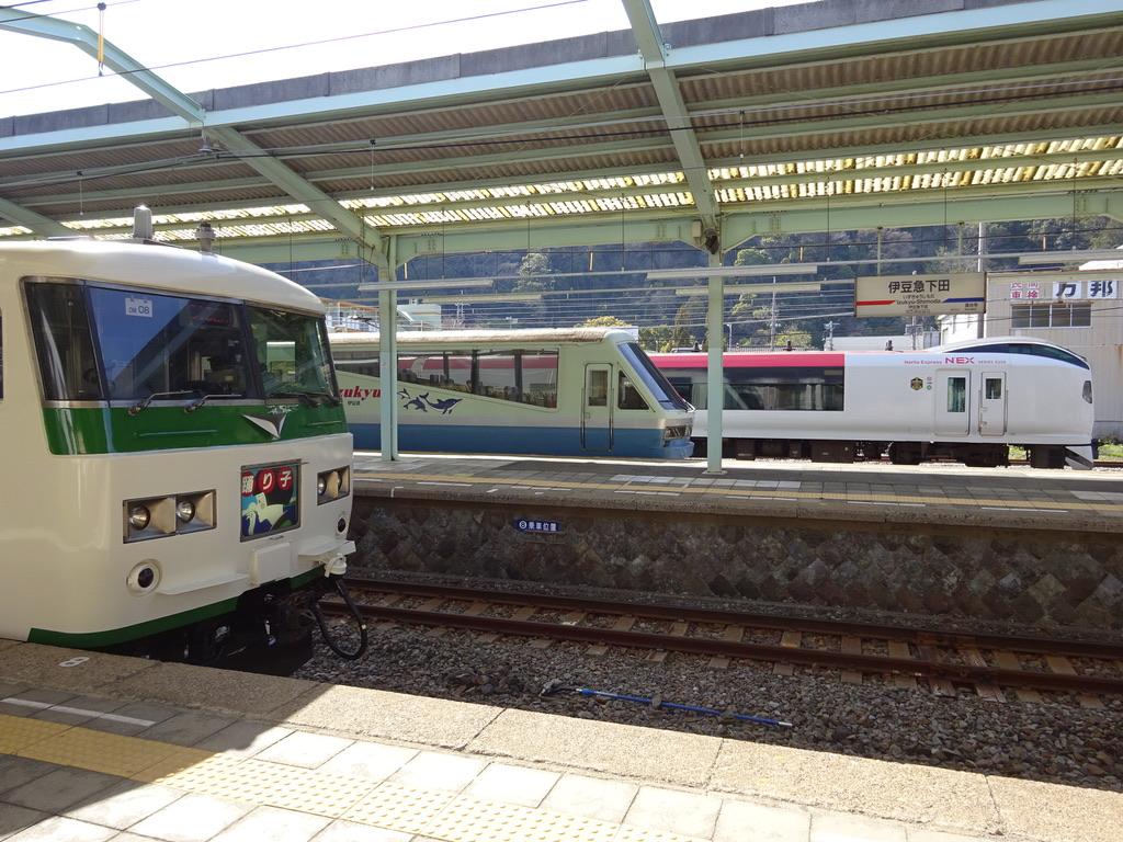 伊豆急下田駅に停車中の185系・リゾート21・E259系(2015/3/28)