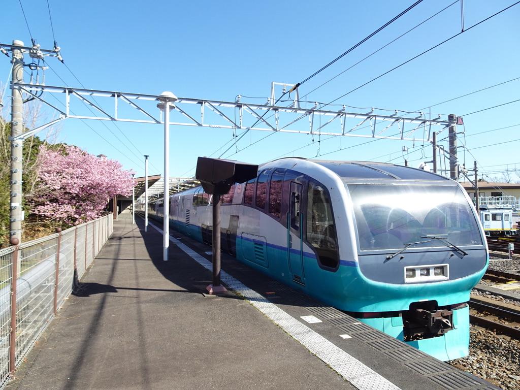 伊豆高原駅3番線に停車中のスーパービュー踊り子2号と河津桜(2020/2/11)