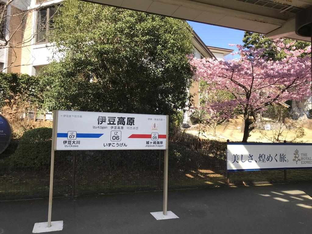 伊豆高原駅3番線の駅名標と河津桜 (2020/2/11)
