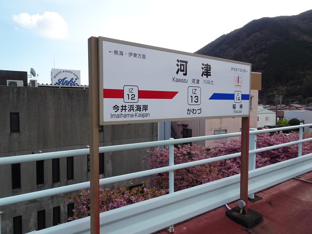 河津駅下りホームの駅名標と後ろに見える満開の河津桜(2020/2/22)