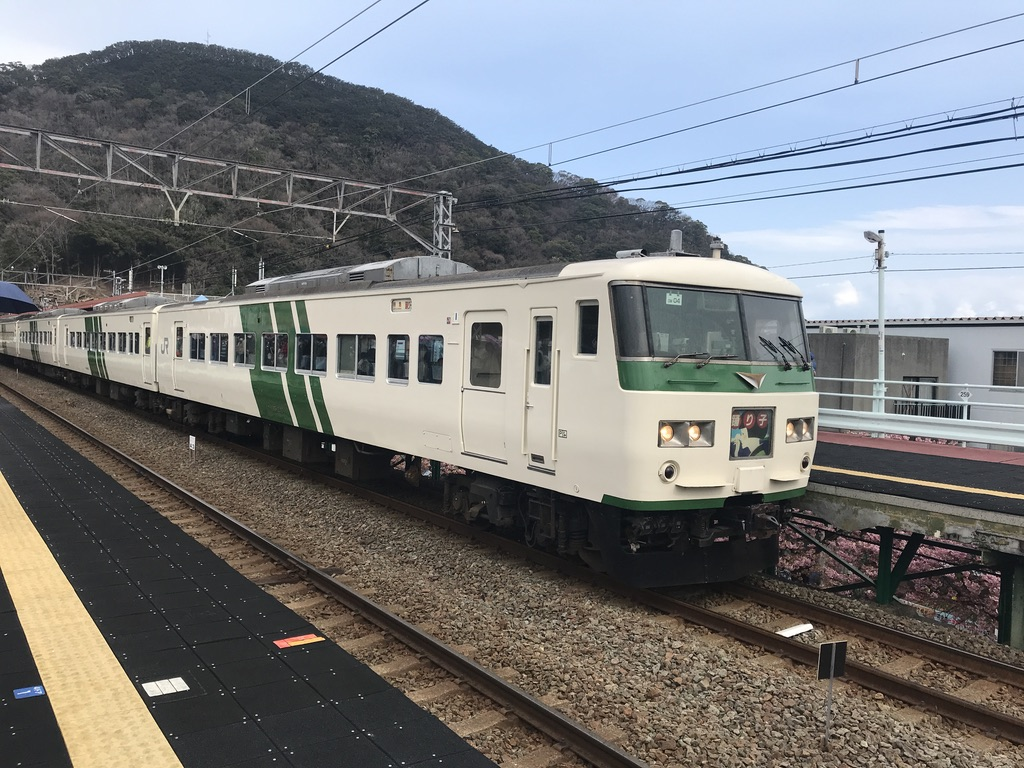 河津駅に到着した踊り子131号伊豆急下田行き(7両)とホーム下に見える桜(2020/2/22)