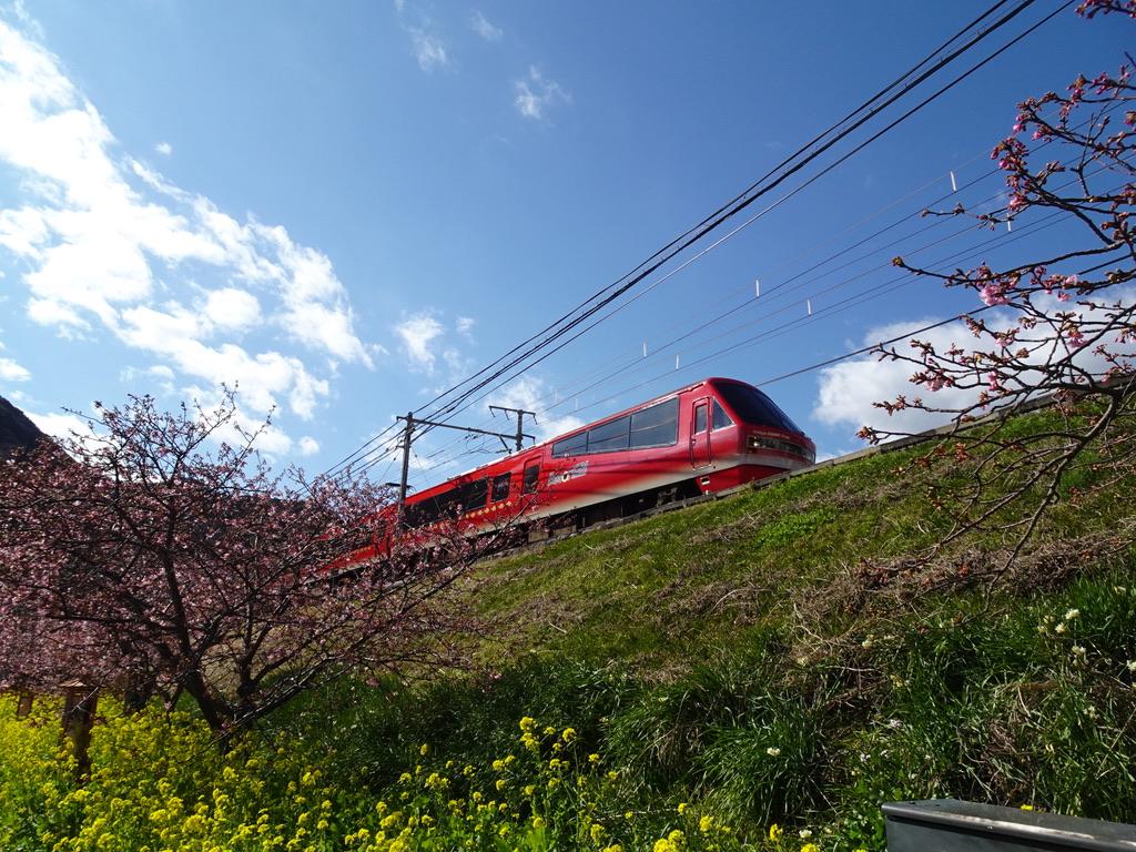 河津駅に到着するリゾート21キンメ電車熱海行き(2020/2/11)