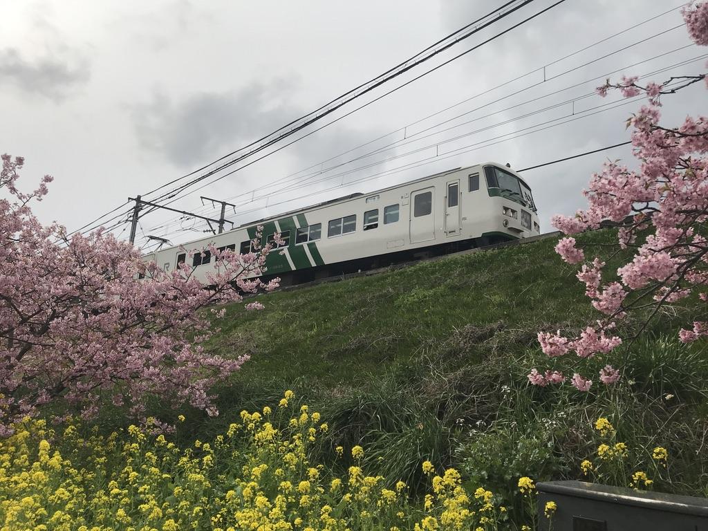 河津駅に到着する踊り子110号東京行き(7号車)(2020/2/22)