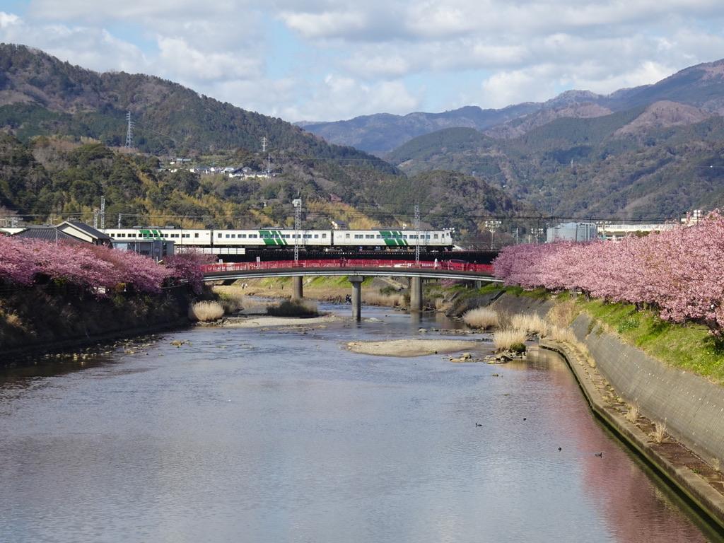 浜橋から撮影した、185系踊り子106号東京行き(2020/2/11)