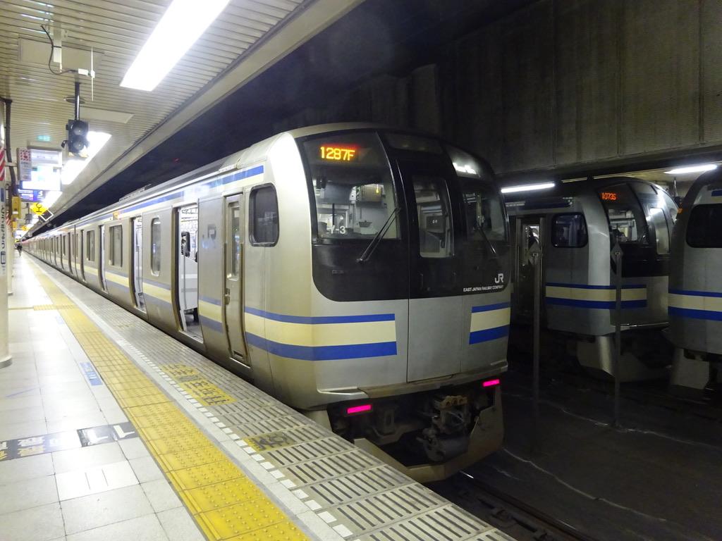 東京駅地下2・3番線に並ぶE217系11両、11+4両(2018/10/8)