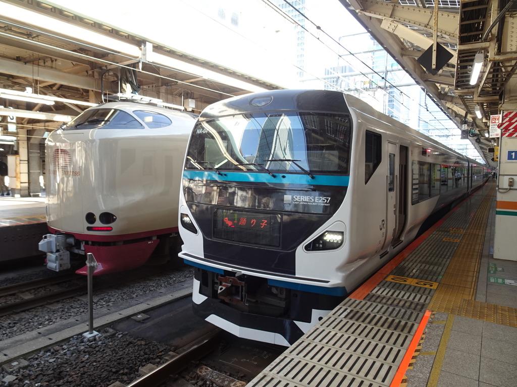 東京駅9番線に停車中のE257系踊り子51号伊豆急下田行き(2020/8/7)今夏はE257系運転はこの日だけ/8番線にはサンライズ瀬戸・出雲も