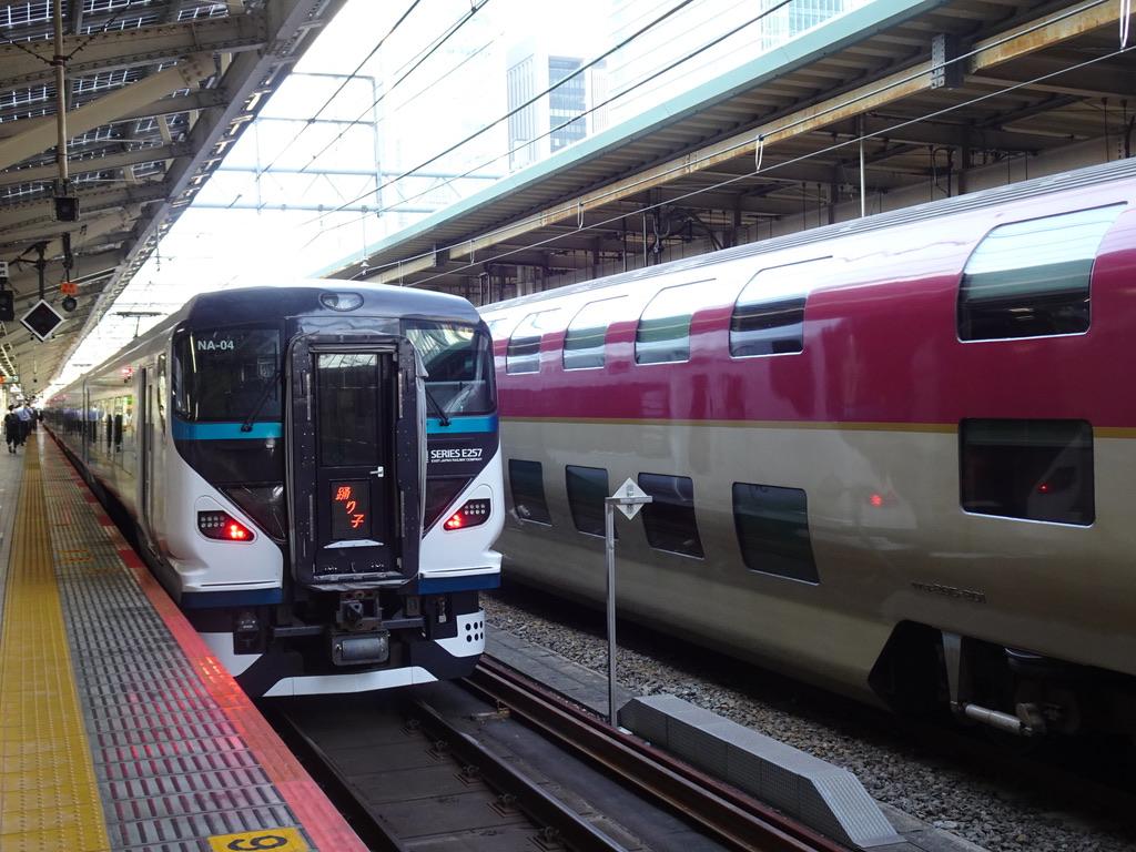 東京駅9番線に停車中のE257系踊り子51号東京行きと、8番線のサンライズ(2020/8/7)