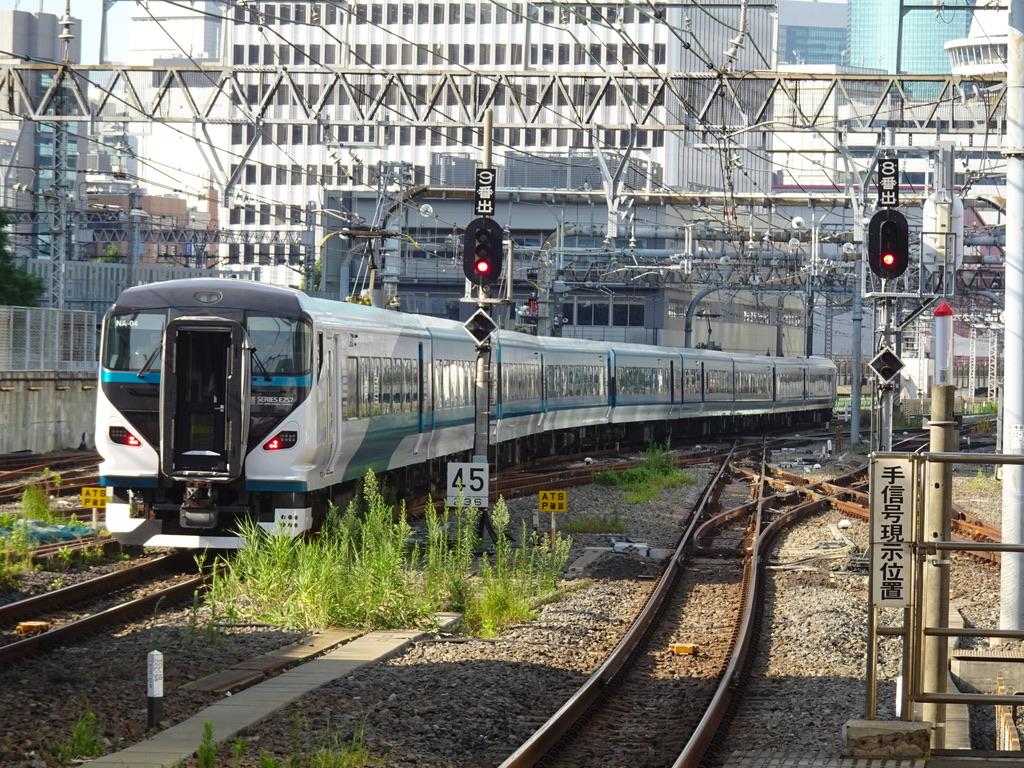 東京駅を3分遅れで出発したE257系踊り子51号伊豆急下田行き(2020/8/7)