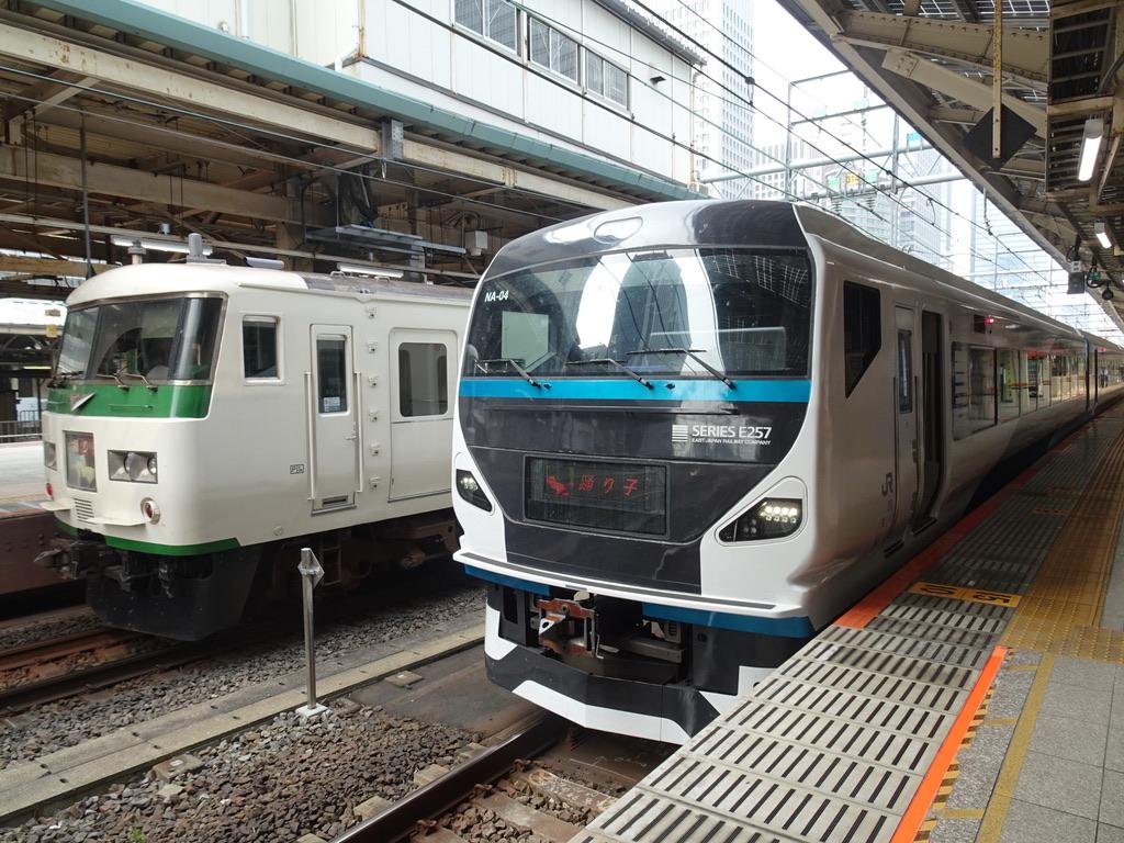 東京駅8・9番線で並ぶ185系踊り子8号、E257系踊り子57号(2020/8/8)