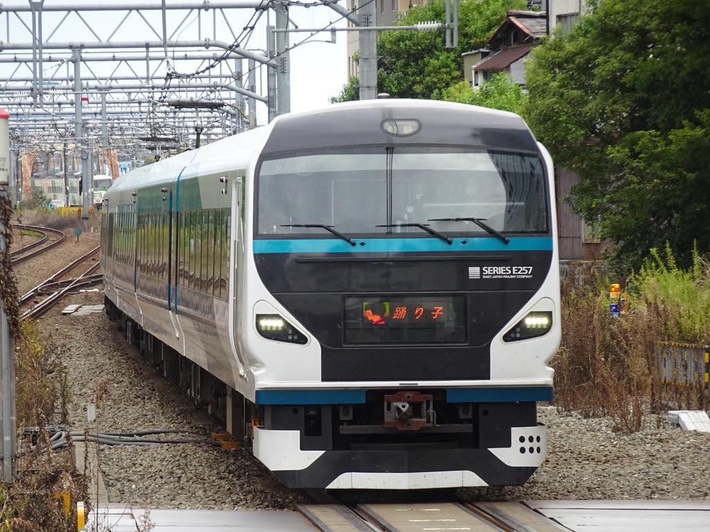 川崎駅1番線に到着するE257系踊り子7号伊豆急下田行き(2020/9/20)