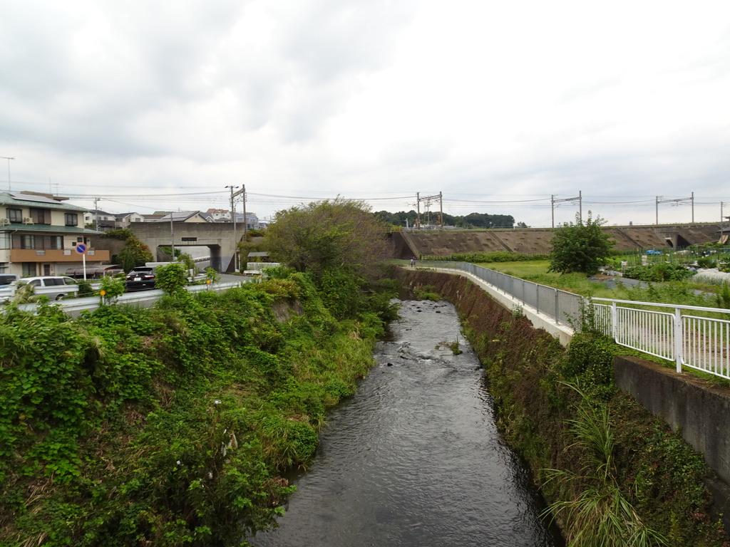 目久尻川を渡る歩道から相鉄本線の線路を眺める(2020/9/22)