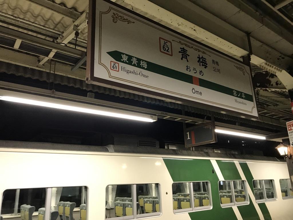 終点の青梅駅1番線に到着した185系(6両編成)ホリデー快速あたみ号(2020/11/7)