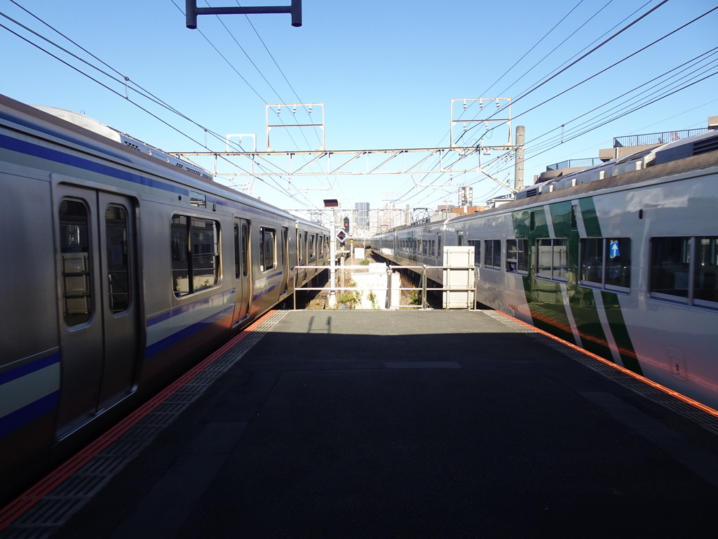 新川崎駅を発車するE217系横須賀線と、通過する185系踊り子5号(2020/11/22)