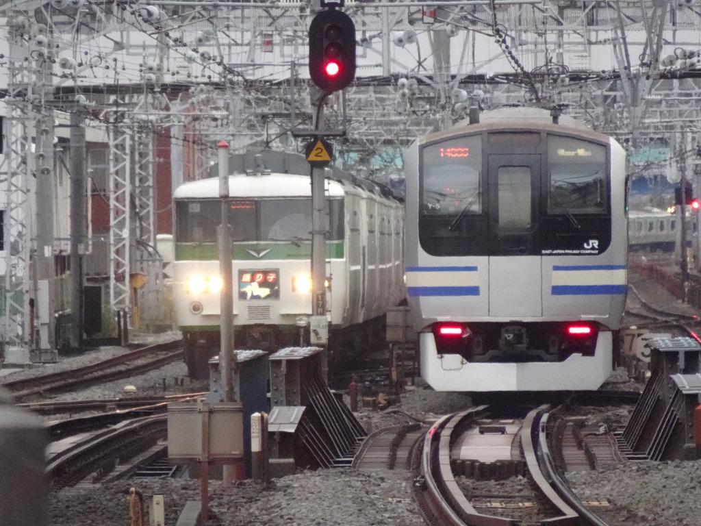 横浜駅到着間際の185系踊り子10号と、発車したE217系横須賀線(2020/11/29)
