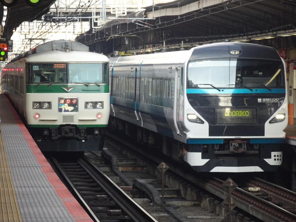 横浜駅に停車中の185系踊り子10号・E257系踊り子57号(2020/12/30)