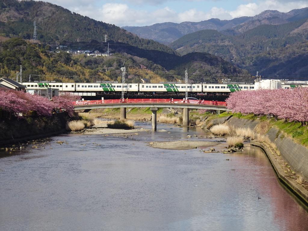 河津川河口付近の浜橋から撮影した、185系踊り子107号伊豆急下田行き(2020/2/11)