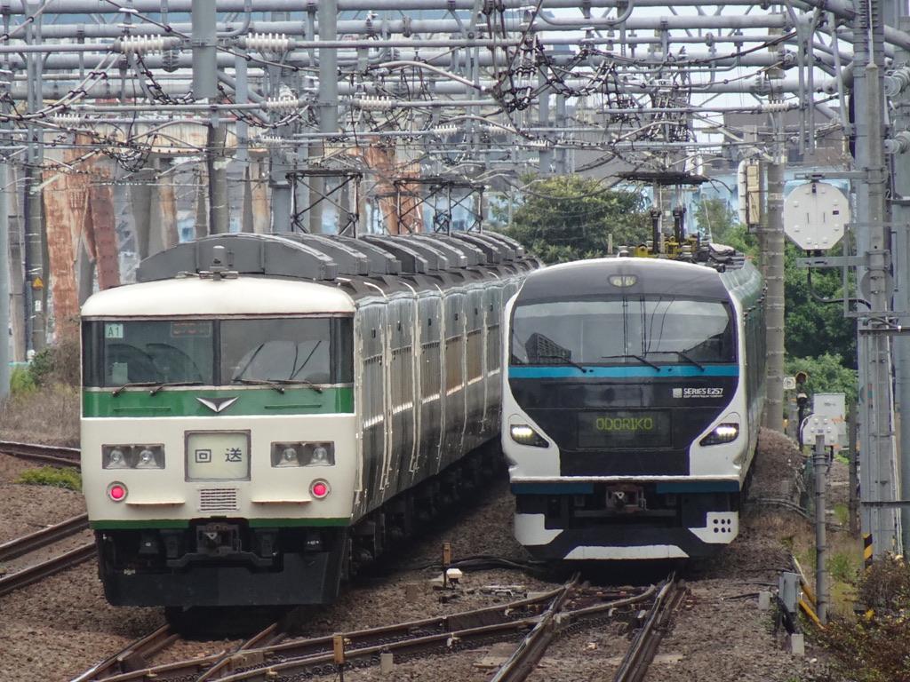 川崎駅付近ですれ違う、185系(15両編成)回送と、E257系(9両編成)踊り子7号(2020/9/20)