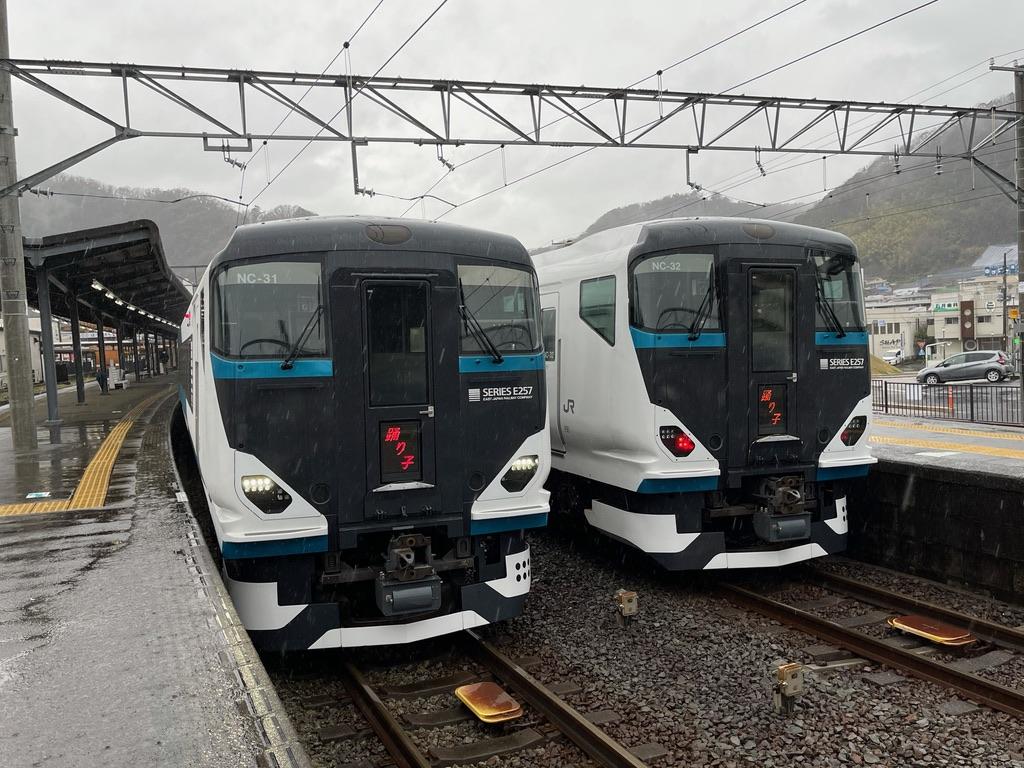 修善寺駅2番線で発車待ちの踊り子12号、3番線に到着した踊り子13号(2021/3/13)