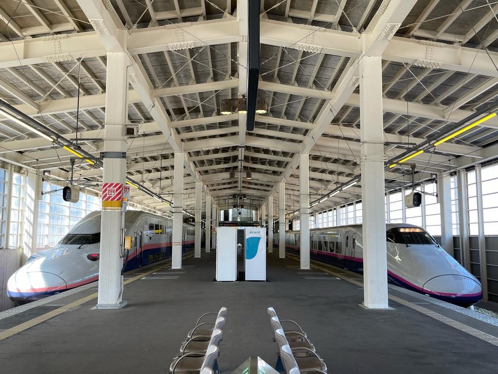ガーラ湯沢駅1・2番線に停車中のE4系・E2系(2021/4/11)