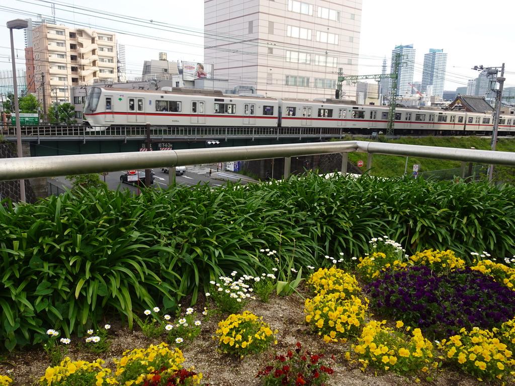 京急東神奈川駅に到着する都営5316Fエアポート急行羽田空港行き(2021/4/24)