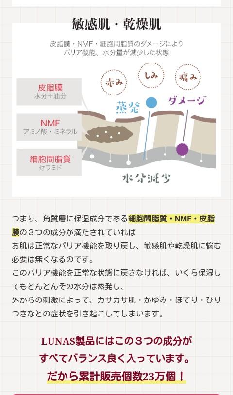 f:id:tyokatsu:20171111224701j:plain