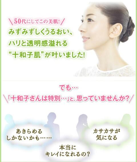 f:id:tyokatsu:20171116210635j:plain