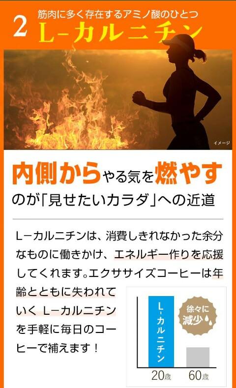 f:id:tyokatsu:20171123201103j:plain