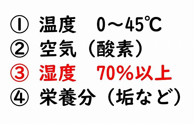 f:id:tyokoripi:20200705194019j:plain