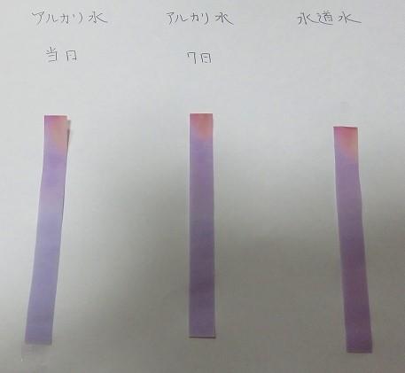 f:id:tyokoripi:20210808124655j:plain