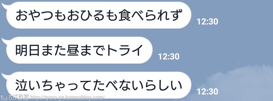 f:id:tyoro_ge:20160504235627j:plain