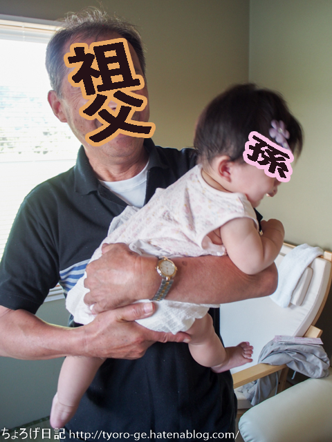 f:id:tyoro_ge:20161023003312p:plain