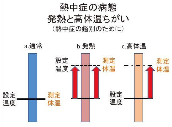f:id:tyoshiki:20180721102839j:plain