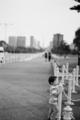 [Nikon FM3A][Planar T* 50mm F1.4 ZF][monochrome]