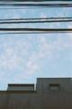 [M3][Summicron50mmF2][Kodak][400VC]