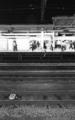 [minolta CLE][Summicron-C 40mm F2][Fuji NEOPAN1600]
