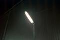 [minolta CLE][Summicron-C 40mm F2][DNP Centuria]