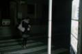 [M3][Summicron50mmF2][Fuji X-TRA400]
