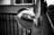 [Zeiss Ikon ZM][COLOR-SKOPAR 35mm F2.5][ILFORD FP4]