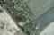 [CONTAX N1][Makro-Sonnar T* 100mm F2.8N][DNP Centuria]