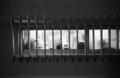[BESSA R4A][Ultron28mmF2][Kodak 400TX]