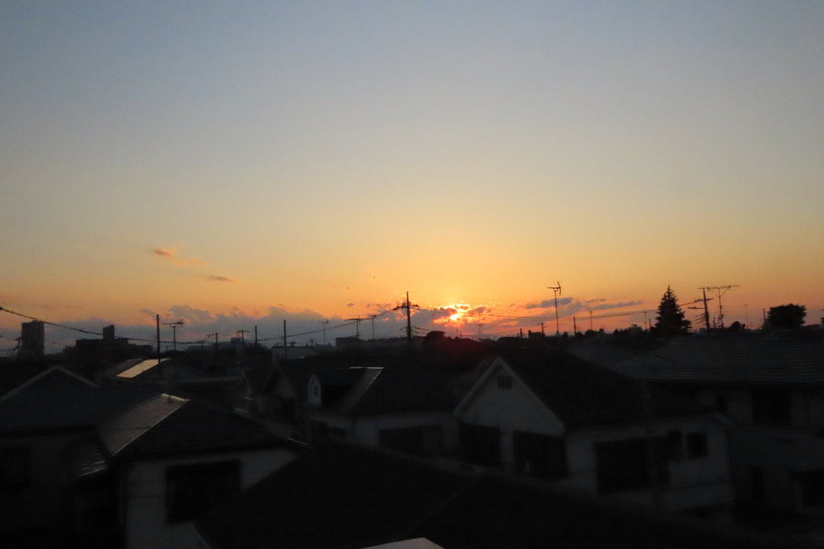 f:id:tyuugakusei_birder:20210920175955j:plain