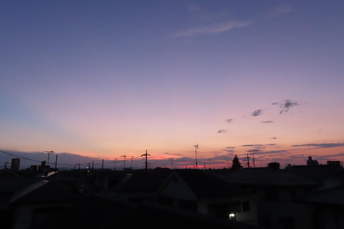 f:id:tyuugakusei_birder:20210920183612j:plain