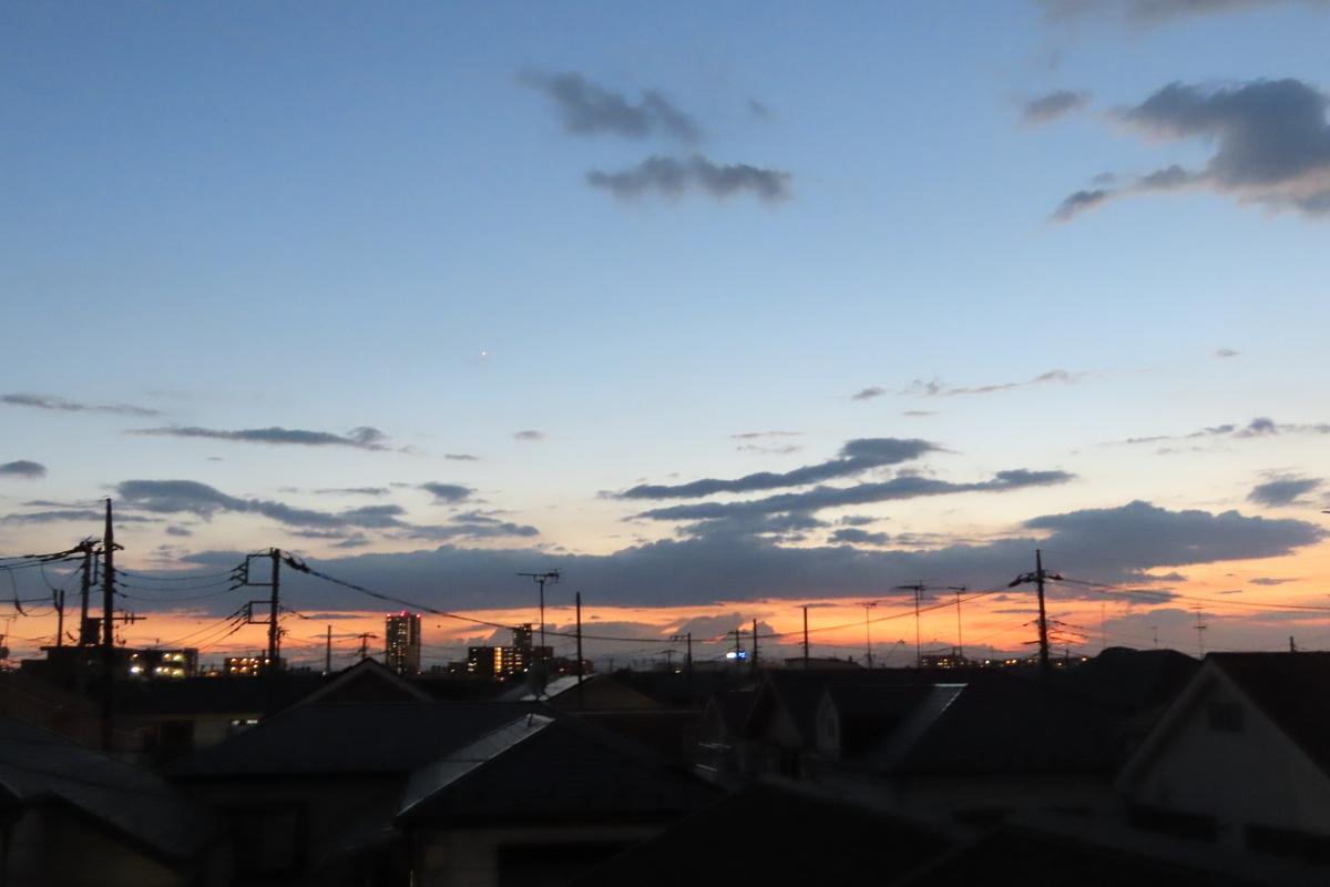 f:id:tyuugakusei_birder:20210920184040j:plain