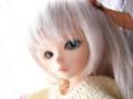 [Tiny Fairy][May]