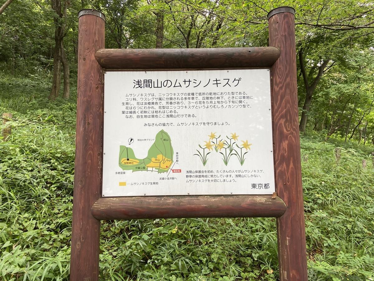 f:id:u-tsu-ro-i:20210807184958j:plain